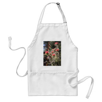 Indian Paintbrush Aprons