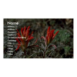 Indian Paintbrush Business Card Template