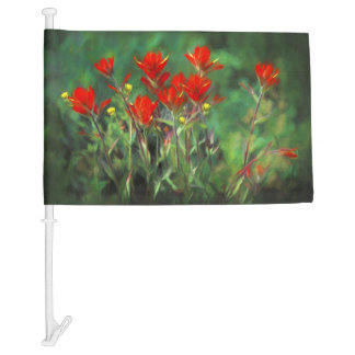 Indian Paintbrush Car Flag