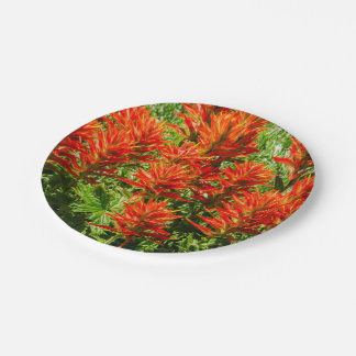 Indian paintbrush (Castilleja) - Wildflowers 7 Inch Paper Plate