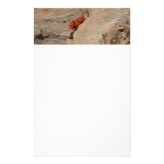 Indian Paintbrush in Rocks Floral Stationery