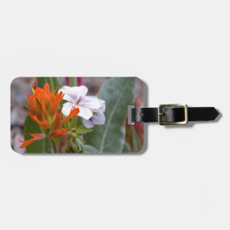 Indian Paintbrush Tags For Luggage