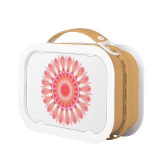 Indian Paintbrush Lunch Boxes