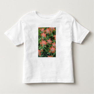 Indian paintbrush wildflowers in the Many Toddler T-Shirt