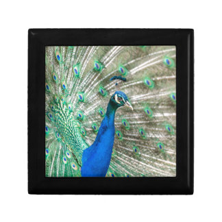 Indian Peacock Gift Box