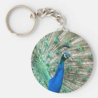 Indian Peacock Key Ring