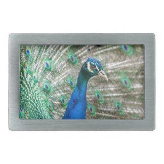 Indian Peacock Rectangular Belt Buckles