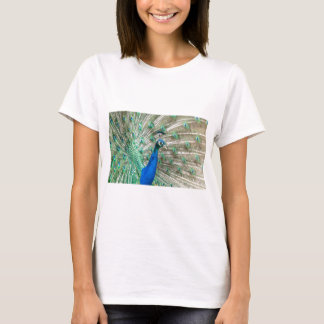 Indian Peacock T-Shirt