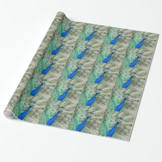 Indian Peacock Wrapping Paper