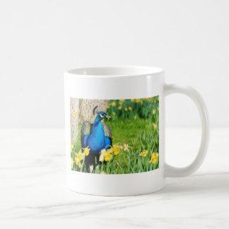 Indian Peafowl among narcissus flowers Coffee Mug
