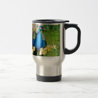 Indian Peafowl among narcissus flowers Travel Mug
