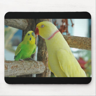 Indian Ringneck and Budgie kissing Mouse Pad