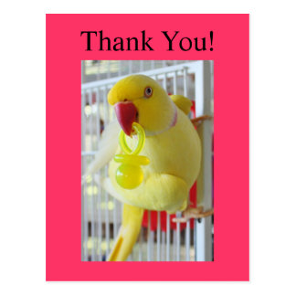 Indian Ringneck Thank You Baby Shower Postcards