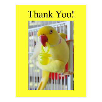 Indian Ringneck Thank You Baby Shower Post Cards