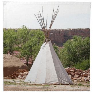 Indian teepee, pioneer village, Utah Napkin