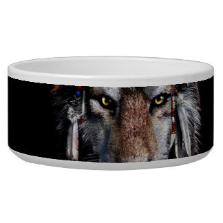 Indian wolf - gray wolf