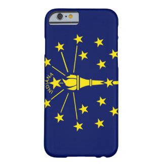 Indiana Flag Barely There iPhone 6 Case