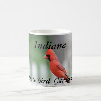 Indiana state bird photo mug