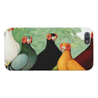 Indianer Pigeons Case For iPhone 5/5S