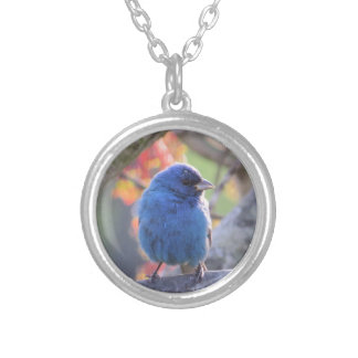 Indigo Bunting Silver Plated Necklace
