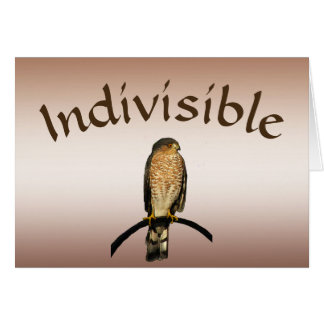 Indivisible Brown Hawk Blank Card