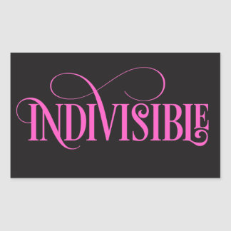Indivisible Sticker / Pink Script