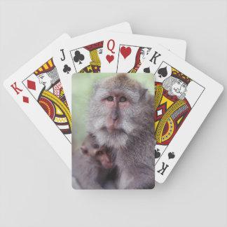 Indonesia, Bali, Ubud, Long-tailed Macaque 1 Poker Cards
