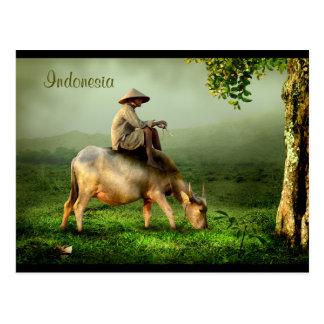 Indonesia Scenic landscape with Buffalo and Farmer Postcard