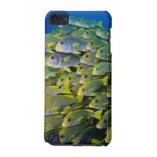 Indonesia. Schooling Fish iPod Touch (5th Generation) Cover