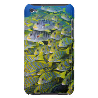 Indonesia. Schooling Fish iPod Touch Cases