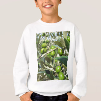 Infested olive tree by olive fruit fly sweatshirt