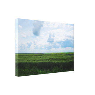Infinite Green Fields Canvas Print