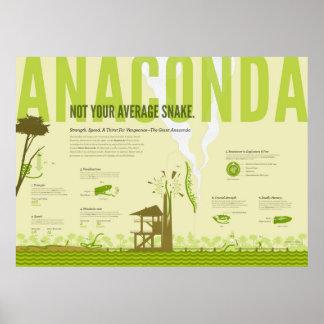 Infographic Anaconda Posters