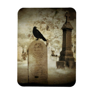Infrared Graveyard Rectangular Photo Magnet