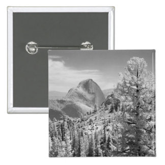 Infrared photo in East side of Yosemite National 2 Button