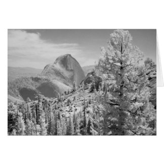 Infrared photo in East side of Yosemite National 2 Card