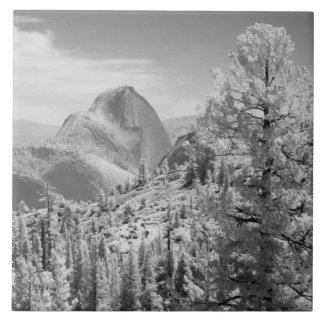 Infrared photo in East side of Yosemite National 2 Large Square Tile