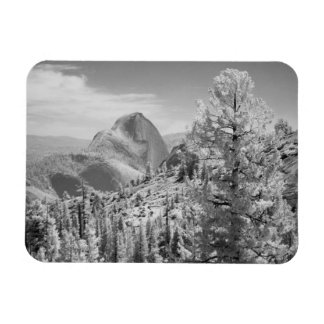 Infrared photo in East side of Yosemite National 2 Rectangular Photo Magnet