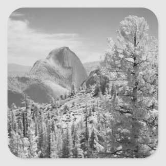 Infrared photo in East side of Yosemite National 2 Square Sticker