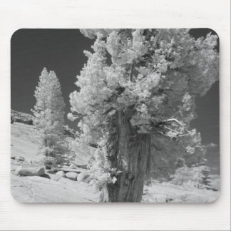 Infrared photo in East side of Yosemite National Mouse Pad