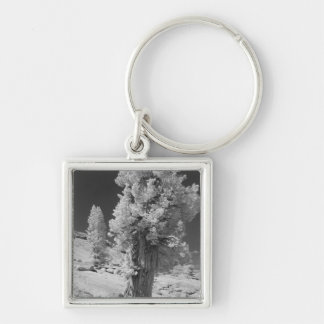 Infrared photo in East side of Yosemite National Silver-Colored Square Key Ring