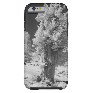Infrared photo in East side of Yosemite National Tough iPhone 6 Case