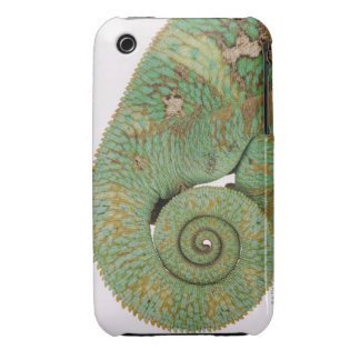 Inhabits dry mountainous areas. Indigenous iPhone 3 Case-Mate Cases