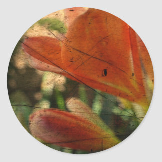 Inka Lily Abstract Round Sticker