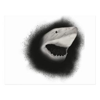 Inked Shark Attack Postcard