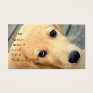 Innocent Abby Business Card
