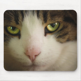 Innocent Looking Mouse Pad