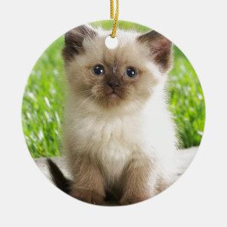 Innocent Ragdoll Kitten Ceramic Ornament