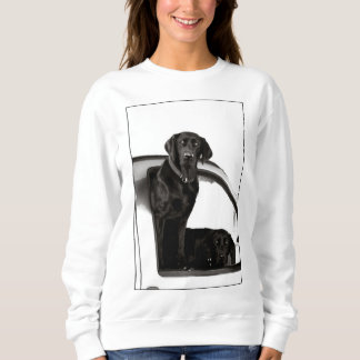 Inquisitive Black Labs - Sweatshirt