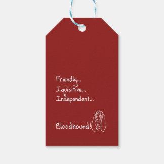 Inquisitive Bloodhound